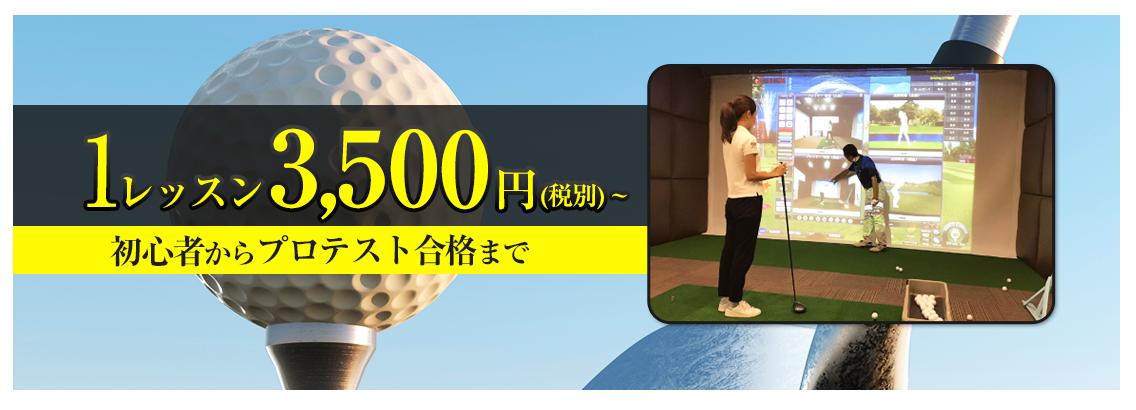1レッスン3500円~